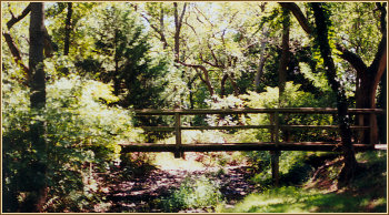 Photo of Bridge on Museum Grounds